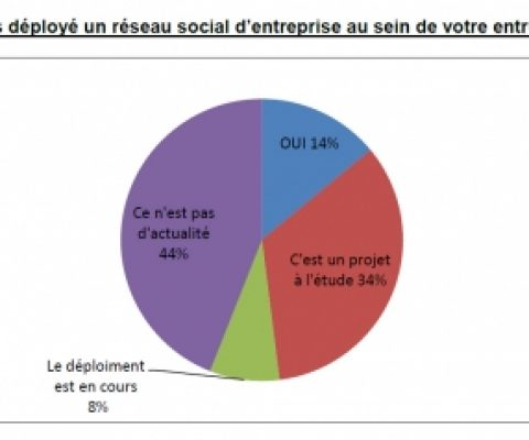 With France in recession, 56% of IT directors expect 2013 to be a dud year