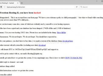 Un hébergeur d'images pédopornographiques piratés par les Anonymous