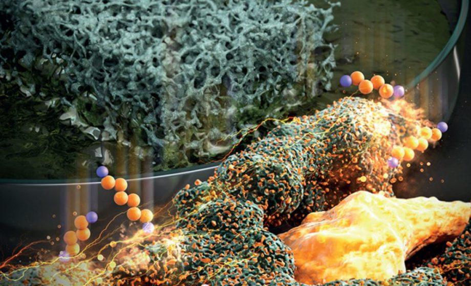 Batterie Lithium-Soufre: une découverte qui pourrait tout changer