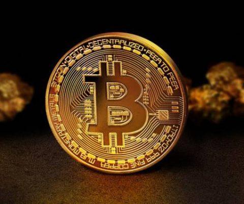 Pourquoi le cours du BitCoin est-il en chute libre?