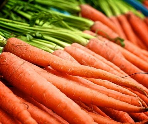 Want your startup to succeed? Peel carrots