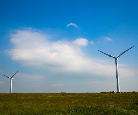 Deep Mind peut anticiper la production d'une éolienne