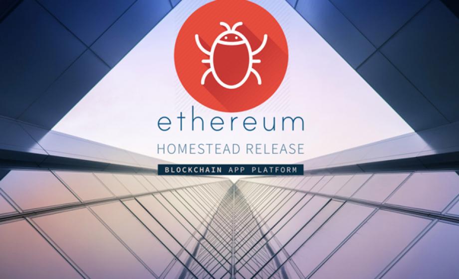 Blockchain : des pirates utilisent un bug dans les smart contracts d'Ethereum