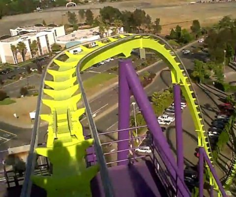 The Ups & Downs: How Startup Life is Like a Rollercoaster