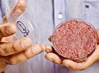 Memphis Meats et sa viande artificielle lèvent 161 millions de dollars