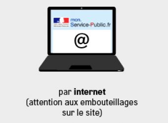 Servers crash, some parisians won't get to vote in 2014